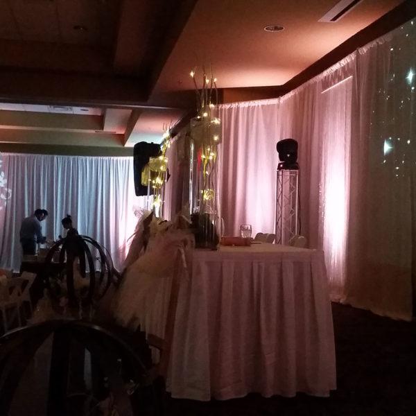 Sun Valley Wedding Lighting